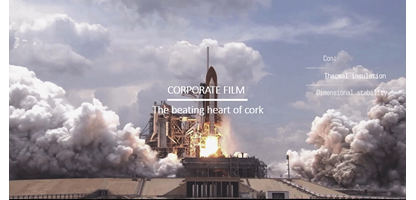 corporatevideo